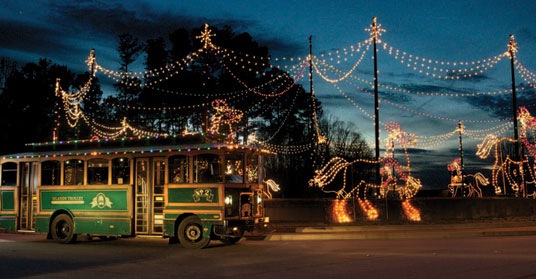 Awesome picture of christmas light shows in georgia fabulous homes interior design ideas for Rock city enchanted garden of lights coupon